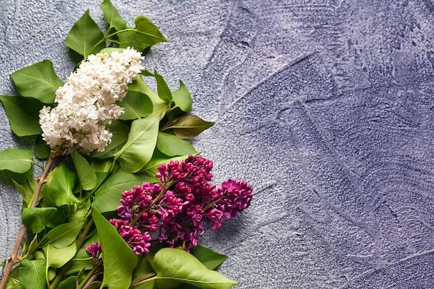 Fiore lilla sul telaio di sfondo grigio cemento