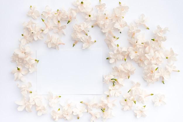 Fiori lilla su uno sfondo bianco vista dall'alto piatta copia spazio cornice floreale