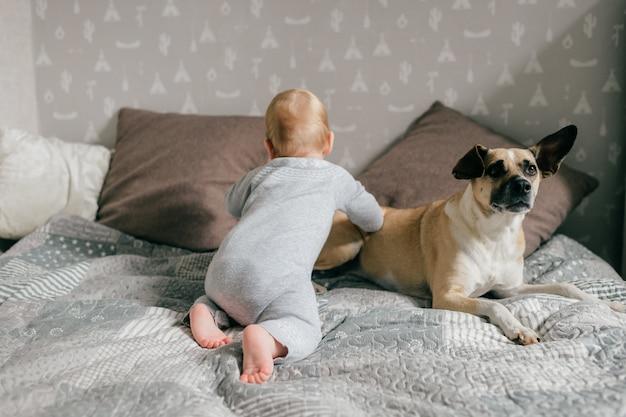 Piccolo neonato che gioca con il cane sul letto