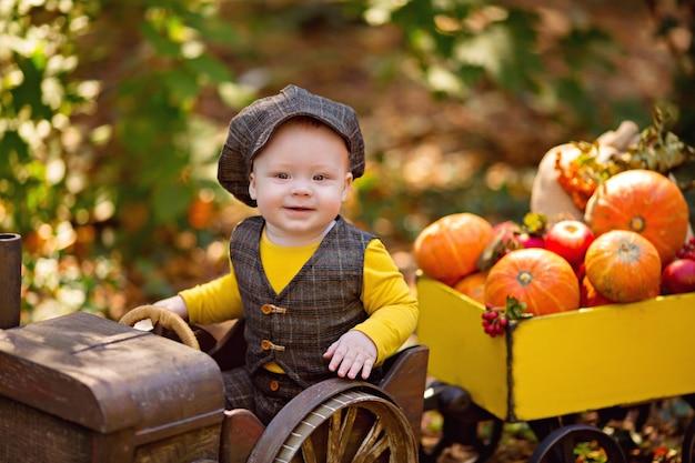 Piccolo neonato in un trattore con un carrello con un raccolto autunnale zucche, viburno, sorbo, mele