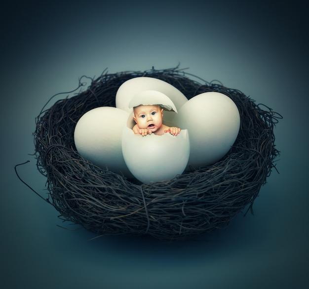 Piccolo bambino nell'uovo nel nido