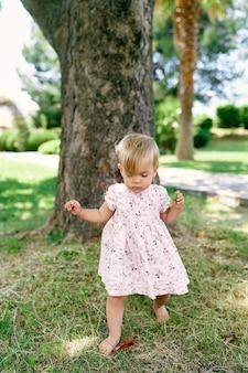 La bambina a piedi nudi con una foglia in mano cammina davanti a un albero sull'erba verde