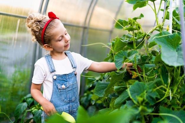 Una ragazzina bionda in una serra con una scapola e un rastrello si prende cura delle piante