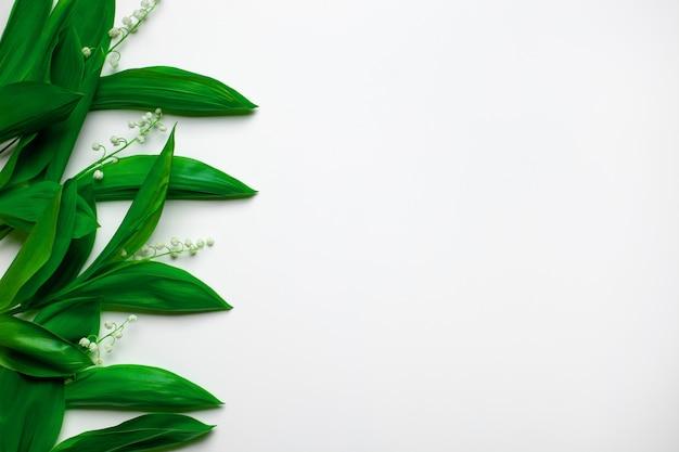 Piccoli bouquet con foglie verdi di mughetto come bordo floreale a sinistra con copia sp...