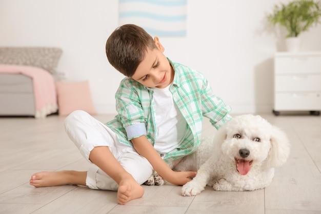 Ragazzino e cane bichon frise a casa