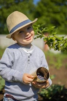 Un ragazzino mangia un caprifoglio blu da una tazza d'oro
