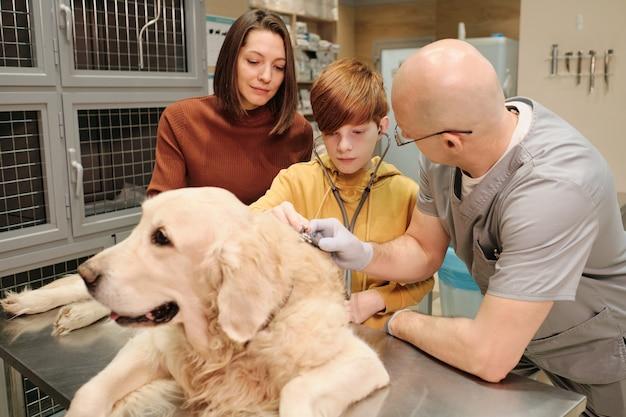 Ragazzino che esamina il suo animale domestico con lo stetoscopio insieme alla madre e al medico in clinica