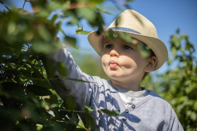 Il ragazzino in cappello di paglia alla moda raccoglie la bacca del caprifoglio