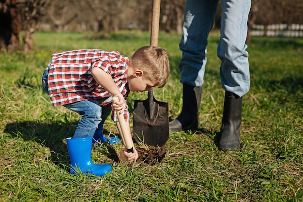 Ragazzino che indossa una maglietta a quadri rossa scavando un buco per un nuovo albero mentre si fa giardinaggio con suo nonno nel cortile di una casa di campagna