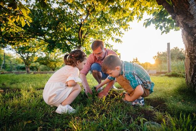 Fratellino e sorella stanno piantando piantine con il padre in un bellissimo giardino di primavera al tramonto. nuova vita. salva l'ambiente. attitudine attenta al mondo e alla natura circostanti.