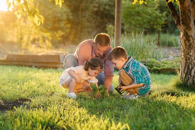 Piccolo fratello e sorella stanno piantando piantine con il padre in un bellissimo giardino primaverile al tramonto. nuova vita. salva l'ambiente. atteggiamento attento al mondo e alla natura circostanti.