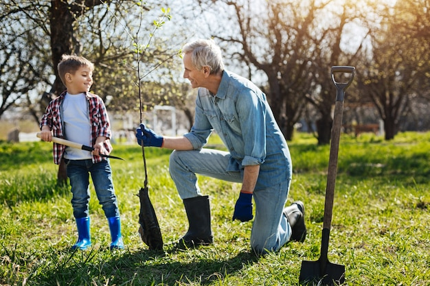Piccolo bambino che aiuta il nonno sorridente a piantare un nuovo albero da frutto nel cortile di una casa di campagna