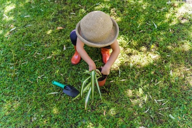 Piccolo bambino che pianta al giardino