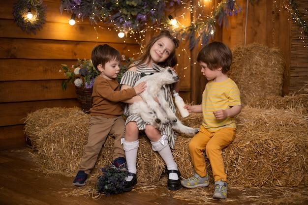 Ragazzi e ragazza dei piccoli bambini in azienda agricola che si siede in covoni di paglia e che gioca con la capra in granaio