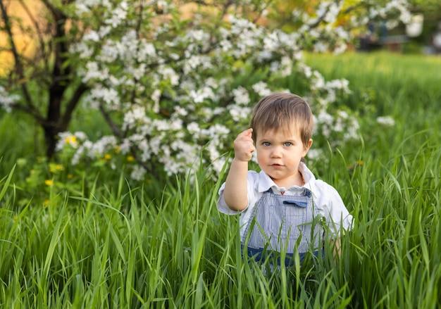Ragazzino divertente in una tuta blu alla moda con occhi azzurri espressivi. sorrisi carini e mangia erba verde fresca in un grande giardino fiorito nell'erba alta.