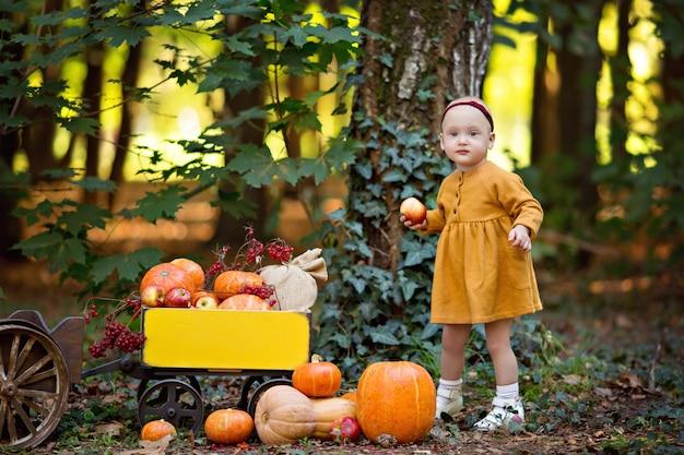 Bambina accanto al trattore con un carrello con zucche