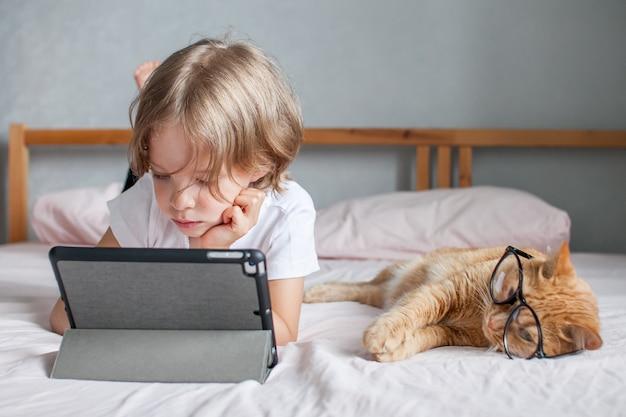 Una bambina fa i compiti online accanto a lei giace un grasso gatto zenzero con gli occhiali comunicazione