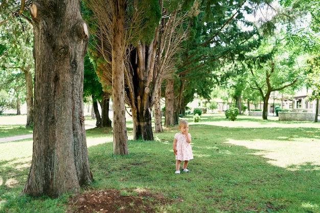 La bambina in un vestito sta sull'erba verde fra gli alberi nel parco