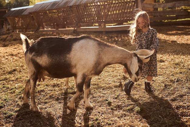 A una bambina piace stare in una fattoria con animali.