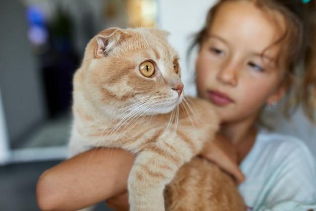 Bambina che tiene il gatto tra le braccia a casa al coperto, bambino che gioca con animali domestici pet