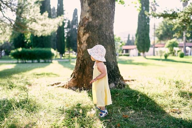 Una bambina con un cappello panama si trova vicino a un albero nel parco sulla vista laterale dell'erba