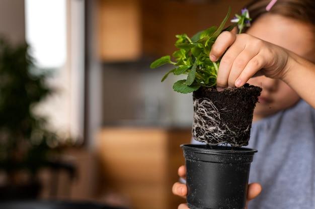 Bambina che pianta i fiori in vaso a casa
