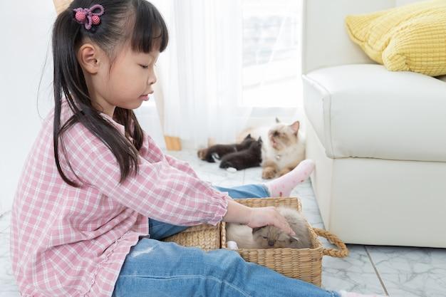 Bambina che gioca con il gatto a casa, concetto della nave dell'amico.
