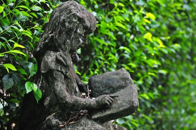 Statua del libro di lettura della bambina davanti alla parete verde dell'albero nel giardino