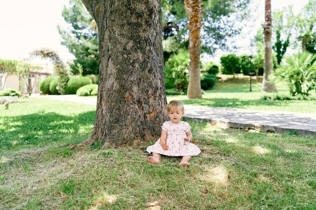La bambina si siede vicino a un platano su un prato verde
