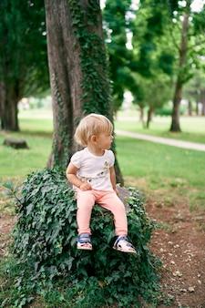 La bambina si siede su un ceppo di albero intrecciato con l'edera verde nel parco