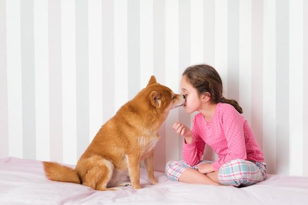 Bambina seduta sul letto nella sua stanza rosa con il suo affascinante cane di razza giapponese, shiba inu, mentre il suo cane le succhia il viso. concetto di momento di relax.
