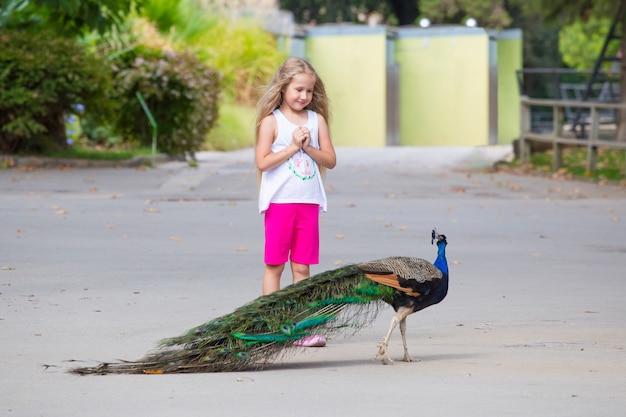 Una bambina in abiti estivi guarda un pavone che cammina.