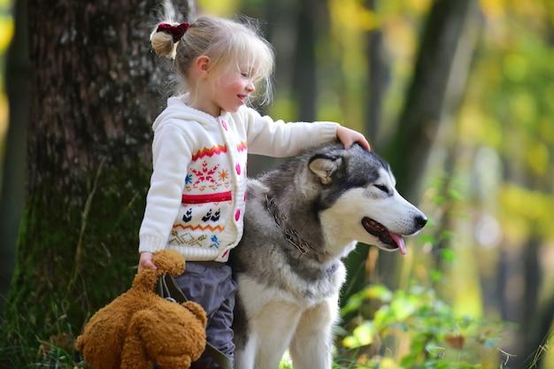 Bambina che cammina con il cane nella foresta di autunno.