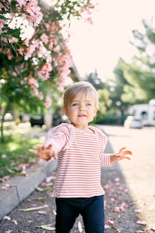 La bambina cammina sull'asfalto oltre un cespuglio rosa in fiore