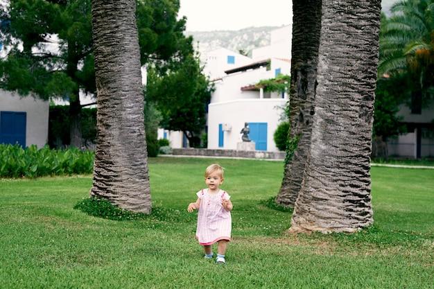 La bambina cammina su un prato verde sullo sfondo di enormi palme da datteri