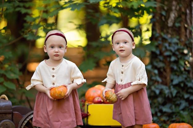 Gemelli di bambine accanto al trattore con le zucche
