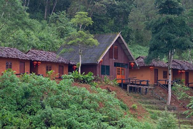 Piccola capanna in mae hong son tea plantation