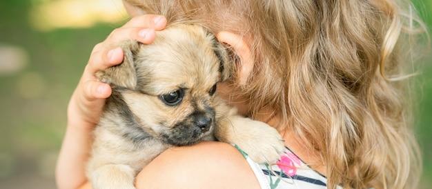 Piccolo cucciolo seduto sulla spalla