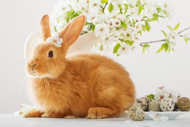 Piccolo coniglio con fiori primaverili e uova di pasqua
