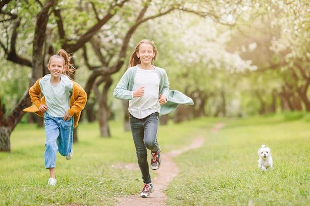 Piccole ragazze sorridenti che giocano con il cucciolo nel parco