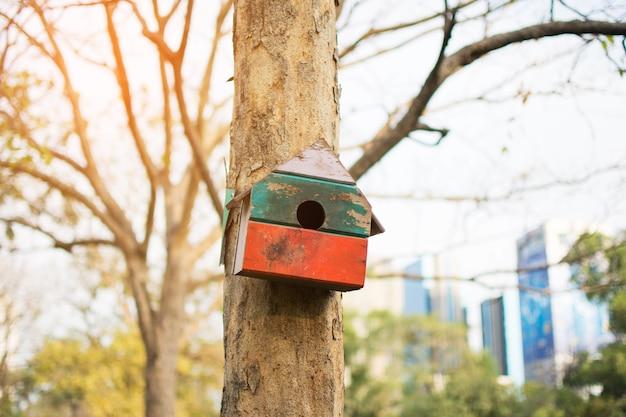 Piccola casa sull'albero dello scoiattolo sull'albero nel parco.