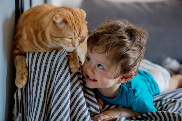 Il piccolo ragazzo del bambino gioca con un gatto del popolare scozzese in casa