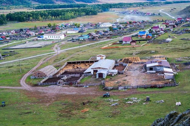 Allevamento di bestiame nel villaggio vista dall'alto russia montagna altai villaggio di bichiktuboom