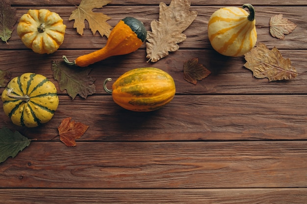 Zucche di produzione locale, quercia secca autunnale e foglie di acero per la decorazione sul tavolo in legno.