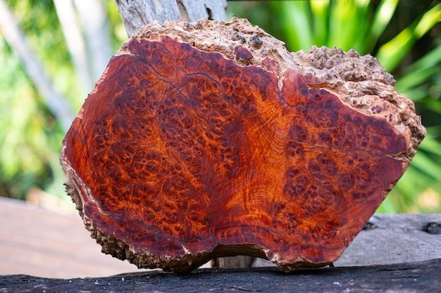 Tronchi amboyna radica di legno a strisce esotico bellissimo motivo in legno per l'arte o lo sfondo dell'artigianato