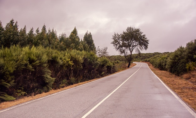 Strada solitaria con tempo nuvoloso