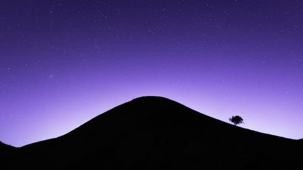 Albero solitario sulla montagna di notte