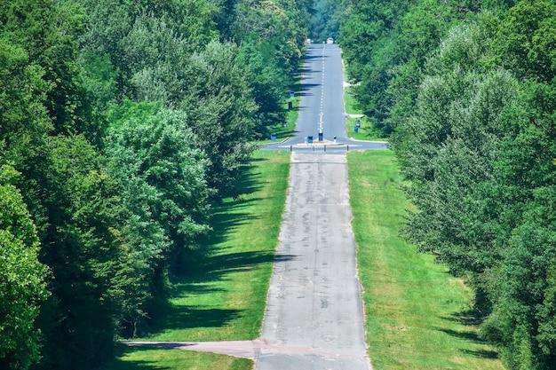Lungo rettilineo asfaltato attraverso il bosco