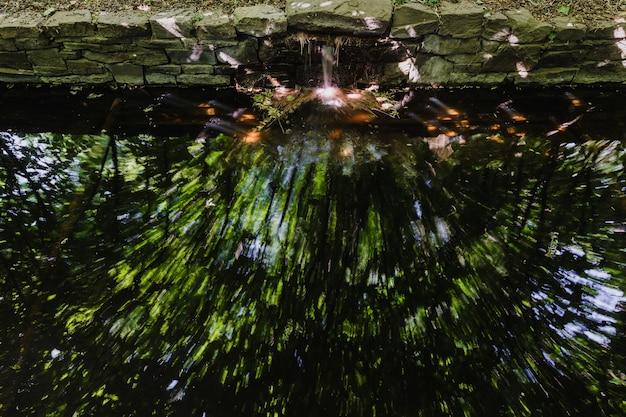 Foto a lunga esposizione del ruscello del giardino con riflessi colorati.