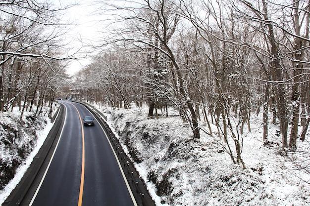 Lunga strada in una foresta invernale.